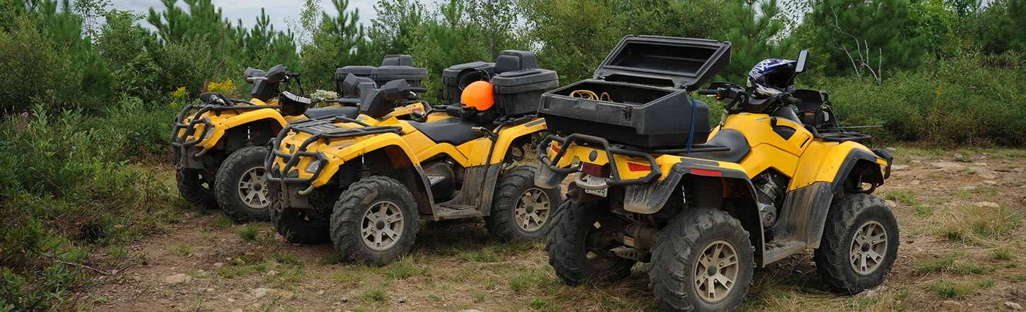Offroad Vehicles